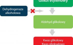 WWP_3_16_ZATRUCIE_GLIKOLEM_ETYLENOWYM_RYC_1