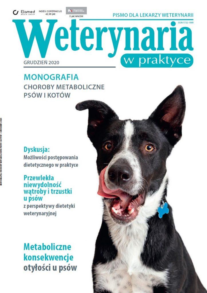 Monografia choroby metaboliczne psów i kotów